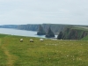 Duncansby Head - The Stacks